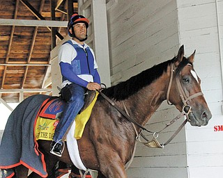 Fresh off a fourth-place finish in Saturday's Kentucky Derby, Went the Day Well will compete in the Preakness on May 19, Youngstown businessman Bruce Zoldan, the horse's co-owner, said Monday.