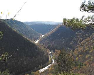"A view of the ""Grand Canyon of the East,"" as it is fondly called, near Wellsboro, Pa. Photo taken during a horseback ride by Lisa and Dominic Pannunzio."