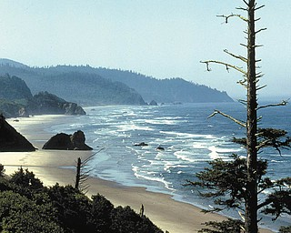 Ken Johnson sent in this photo of the Oregon Coast.