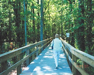 David Krepps of New Middletown sent in this photo of his wife, Patricia Krepps, exploring nature in Sun City, S.C.