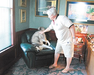 Atty. Jack Vaughn's dog, Mush, suffers from severe separation anxiety so Vaughn brings the dog to work with him.