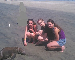 Wendy Jenkins and Brittany Jenkins of Boardman and Brittany Lockhard of Colorado Springs, Colo., find a baby seal found on Seal Beach in Long Beach, Calif. Photo was sent by Peg Sigle of Boardman, Wendy's mother and Brittany's grandmother.
