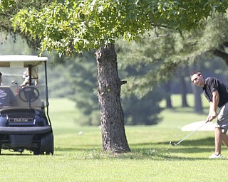 William D Lewis The Vindcator  Ben Basista makes an approach shot on #5 at Trumbull Saturday.