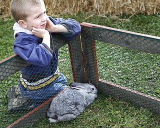 MADELYN P. HASTINGS | THE VINDICATOR  Jadin VanPelt, 5, sits back an enjoys the view of the animals at the autumn festival at Beaver Township Nature Preserve.