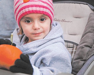 Giada Campana, 3, of Girard holds a miniature pumpkin, which proved a big attraction among children at the walk.