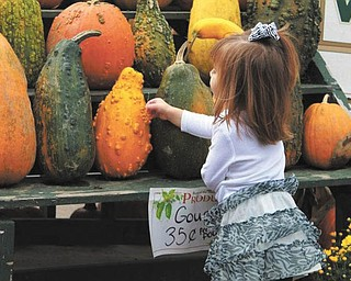 "We received this picture of Sophia Testa, 22 months, enjoying the treasures of fall (taken by her ""favorite nanny Pretty Britty"")."