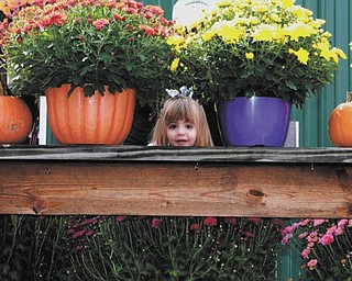 "We received this picture of Sophia Testa, 22 months, playing peekaboo with her ""favorite nanny Pretty Britty."""