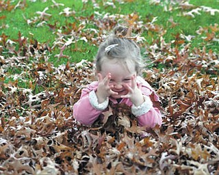 Naomi Lane of Walhonding, Ohio, who loves the leaves, provides pure joy to Grandpa Dave and Grandma Dawn Dickey of North Lima.