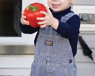 Wesley beams as he examines a red bell pepper he pulled out of the box.