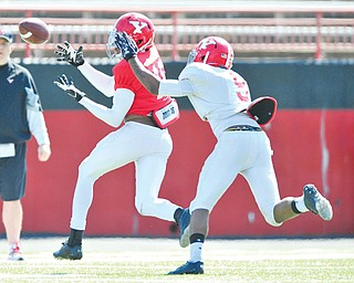 Youngstown State receiver Marcel Caver (16) catches a pass while avoiding defensive back Julius Childs (9) during Saturday's practice at Stambaugh Stadium.
