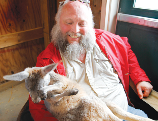 Dwayne Felger holds a baby kangaroo at the Mill Creek MetroParks Farm baby shower celebrating the arrival of the new animals.