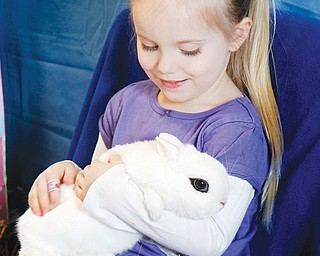 Makayla Martuccio, 4, of Mineral Ridge holds a baby bunny at Sunday's event.