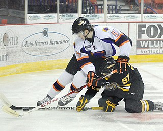 The Phantoms' Tommy Davis (5) battles for the puck with the Gamblers' Grigory Dikushin in the second