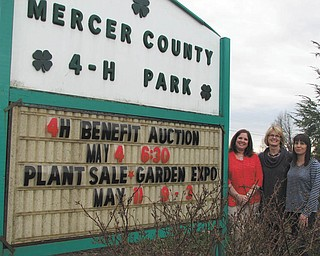 SPECIAL TO THE VINDICATOR Penn State Cooperative Extension and Mercer County Master Gardeners chairwomen, from left to right, are Alaine Supel, Babs Quincy and LeeAnn Suso, who are preparing for the annual May Day Plant Sale and Garden Expo from 9 a.m. to 3 p.m. May 11 at the 4-H Park, 463 N. Perry Highway (Route 19), Mercer, Pa. Featured plants will be annuals, perennials, herbs, vegetables, trees and shrubs. Vendors added this year will display photography, fine art, jewelry, personal care products, essential oils, garden art, flea market items, ice cream and beverages. Admission is free.