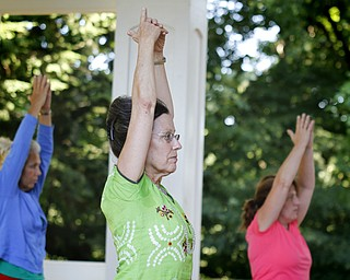 MADELYN P. HASTINGS | THE VINDICATOR  (L-R) Carol Opatken, Karres Cvetkovich and Margaret Popovich participate in a yoga class at the Fellows Riverside Gardens in Mill Creek Park on Thursday, July 25. Pilates and tai chi are also offered through the 'Scenic Fitness Workshop'.