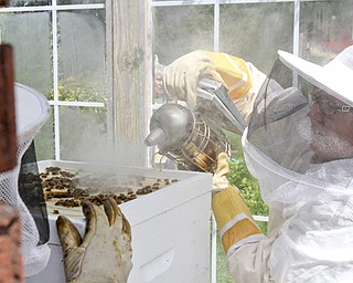 William D Lewis The Vindicator  Lori Mowad, Mill Creek Park Fellows riverside garden employee uses a smoker to calm bees before opening a hive.