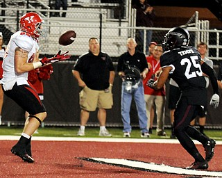 Youngstown State's Carson Sharbaugh brings in a game-tying touchdown against Southern Illinois' Chris Davis pass late in the fourth-quarter during the Salukis' 28-27 loss to the Penguins at Saluki Stadium on Saturday, Sept. 28, 2013, in Carbondale, Ill. (Paul Newton / The Southern)