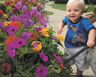 Logan Cheney of Liberty enjoying the colorful flowers. Sent by his parents Jason and Amanda.