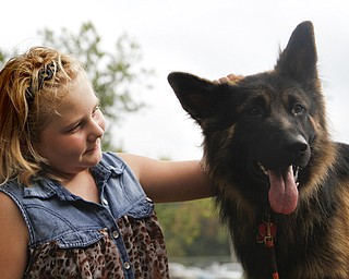 MADELYN P. HASTINGS | THE VINDICATOR..Kylee Vidas, 10 of Howland, pets the one year old longhaired straight back german shepherd named Ekko at the 'Sit Means Sit' dog training booth set up at the Fall Festival at Stevens Park in Niles on Saturday, October 5, 2013. ... - -30-..
