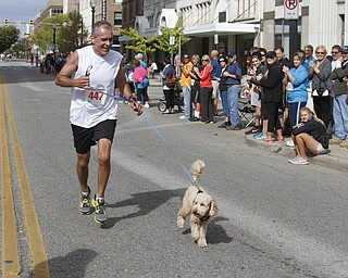 .          ROBERT  K. YOSAY | THE VINDICATOR..Running partner.. well at least the last couple of blocks Milo... escorted his owner  Tim Green of McDonald down Federal Street to the finish line..The 39th Annual Peace Race -  with over 2000 runners on a beautiful October day