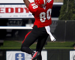 MADELYN P. HASTINGS | THE VINDICATOR..YSU's Andrew Williams (80) catches the ball during their game against NDSU at Stambaugh Stadium on November 16, 2013. The Penguins lost to Bisons 17-35.... - -30-..