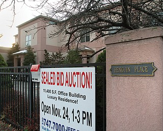 Penguin Place, which was the home of former Youngstown State University President Les Cochran and his wife, Lin, is going up for auction. The two-story, 11,400-square-foot building includes office space with an area on the second floor that could be used as a residence.