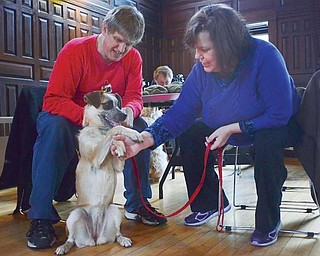 Rosie practices a handshake with her owners, Kriss and Janet Schueller of Boardman, during the Tricks with Your Dog program Sunday at Pioneer Pavilion in Mill Creek MetroParks.
