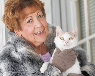 Roni Caruso, who runs Small World Animal Shelter in Girard, holds one of the 27 cats who hang out at her home in Niles.
