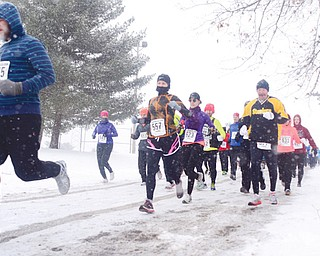 Runners watch out for ice and snow during Sunday's Youngstown Road Runners Club's Mill Creek Distance 5K at the Wick Recreation Area in the park.