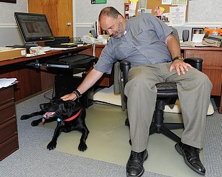 WARREN, OHIO - JUNE 12, 2014: Reverend J. Jeffrey Baker of Christ Episcopal Church pets his dog Sammie the Lab in his office Thursday morning at Christ Episcopal Church Thursday morning. (Photo by David Dermer/ Youngstown Vindicator)