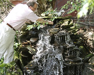 ROBERT K. YOSAY  | THE VINDICATOR.. Pastor Dave adjusts the rocks on his waterfall at the Our Lady of the Lakes Parish-- has an oasis for solitude or just reflection or just enjoying the flowers as the Rev. David W. Merweiler is pastor and gardener.....  -30-