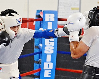 Jeff Lange | The Vindicator  SAT, JUL 9, 2016 - Popo Salinas (left) lands a punch on Jake Giuriceo during a sparring match while training at the gym on Market Street on Saturday, July 9, 2016.