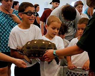 Carl Long Jr. of Austintown tries to hold a large tortoise during the Reptile and Amphibian show at the Mill Creek Farm in Canfield on Sunday afternoon.   Dustin Livesay     The Vindicator  8/6/17  Canfield