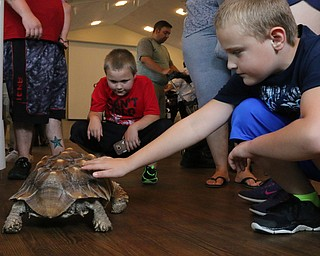 L-R) Landen Such (8) of Campbell and Dylan Washington (8) of Hubbard play with a large tortoise during the Reptile and Amphibian show at the Mill Creek Farm in Canfield on Sunday afternoon.   Dustin Livesay     The Vindicator  8/6/17  Canfield