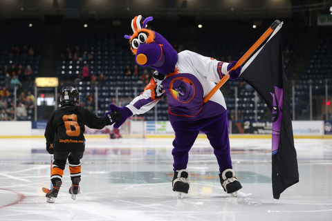 Phantoms mascot Boomer high fives a young player before the first period of an USHL regular season hockey game, Monday, Jan. 15, 2018, in Youngstown. Team USA won 7-1...(Nikos Frazier | The Vindicator)