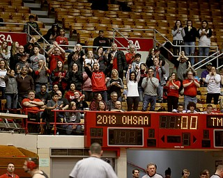 The Canfield spectators cheer on the team as the final matches are tallied resulting in a 33-38 loss to Wauseon in the semi finals of the OHSAA State Wrestling Dual Team Tournament, Sunday, Feb. 11, 2018, at Ohio State University's St. John Arena in Columbus...(Nikos Frazier | The Vindicator)
