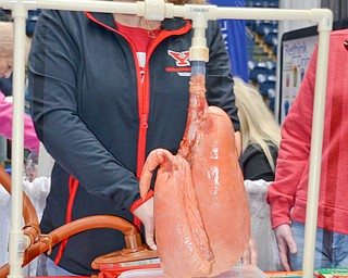 Tammy Kemble pumps air into two lungs, one representing a smoker's lungs and the other representing clean lungs. Kemble is a respiratory care major at Youngstown State University and was volunteering at the Bitonte College of Health and Human Services table at the Valley Health and Wellness Expo, held at Covelli Center on Saturday, March 3, 2018...Photo by Scott Williams, The Vindicator. .