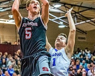 Struthers' Carson Ryan puts up a shot past Lakeview defender Daniel Evans during the Division II District Title game in Boardman on Saturday. Lakeview won the crown 72-59.