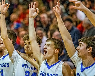 Lakeview players, left to right, Carter Huff, Dawson Brown, Clay Lazzari, and Noah Eddy react after their teammate scored a three pointer during the Division II District Title game in Boardman on Saturday. Lakeview won 72-59...Photo by Dianna Oatridge.