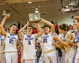 The Lakeview Bulldogs raise the Division II District Championship trophy after beating Struthers 72-59 in Boardman on Saturday...Photo by Dianna Oatridge.