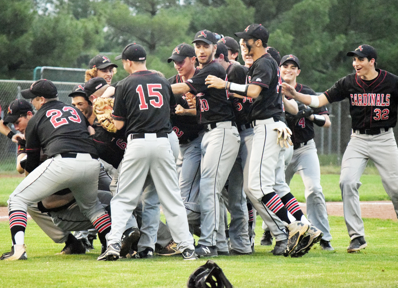 William D. Lewis The Vindincator Canfield'players celebrate after win over Niles 5-17-18.