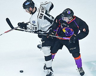 YOUNGSTOWN, OHIO - MAY 19, 2018: Fargo's Garrett Van Wyhe and Youngstown's Max Ellis battle for the loose puck near center ice during the second period of game 4 of the Clark Cup Final, Saturday night at Covelli Centre. DAVID DERMER | THE VINDICATOR