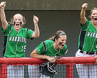 Members of the West Branch softball team celebrate as the Warriors score a run in the fifth inning of a Division II regional semifinal at Firestone Stadium in Akron on May 23.