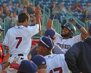 Scrappers catcher Jason Rodriguez (right) gets greeted by his teammate Tyler Freeman (7) as he returns to the dugout after hitting a solo home run in the bottom of the third inning during Monday evenings matchup against the Williamsport Crosscutters at Eastwood Field in Niles.
