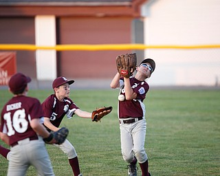 Boardman's Dominic Krol,right. misses the ball while Ivan Rudiak, center, and Grayson Eicher try to help during the Little League baseball 11-U playoff game against Canfield on Wednesday.
