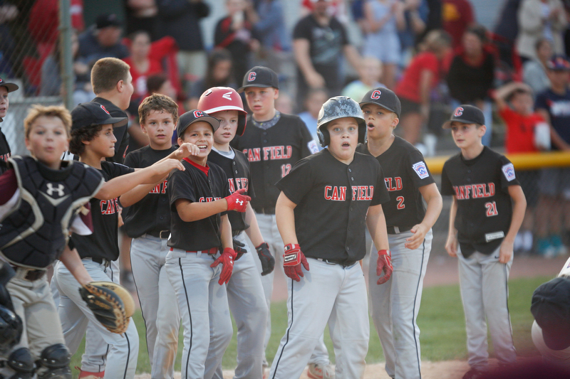 Canfield celebrates after Dylan Mancini, third from right, hits a home run during the Little League baseball 11-U playoff game against Boardman on Wednesday.
