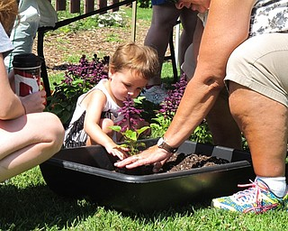 Neighbors | Jessica Harker.Alexandra Lucas potted a salvia plant during the Family Fun Friday event at Fellows Riverside Gardens on July 6.
