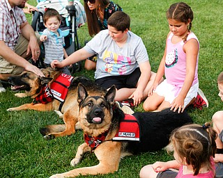 People pet Jaxson, back, and Baron, German Shepherd dogs with the Sit Means Sit training program at the Hot air balloon festival at Mastropietro Winery on Sunday..