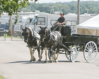 ROBERT K.YOSAY  | THE VINDICATOR..the 172  Canfield Fair is underway at the fairgrounds in Canfield- 52 rides and hundreds of vendors are ready for the traditional end of summer festivities..back to an earlier times two spotted drafts driven by Kevin Coleman as they round the bend. Draft Horse Show i Thursday