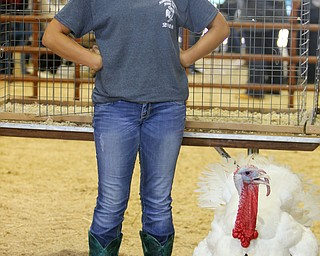 ROBERT K.YOSAY  | THE VINDICATOR..the 172  Canfield Fair is underway at the fairgrounds in Canfield- 52 rides and hundreds of vendors are ready for the traditional end of summer festivities..4-H   competing in the Grand Champion Turkey is Kearstin (ok) Rummel of Alliance and her market turkey